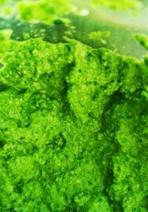 Pesto af friske ramsløg